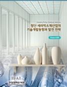 첨단 세라믹소재산업의 기술개발동향과 발전 전략