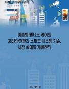 맞춤형 웰니스 케어와 재난안전관리 스마트 시스템 기술, 시장 실태와 개발전략